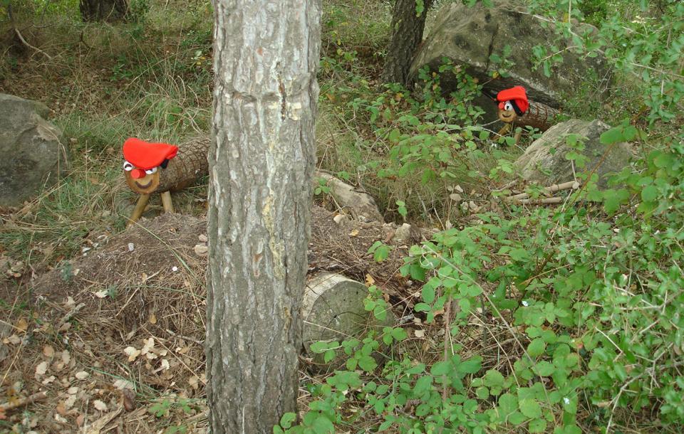 Dos tions al bosc