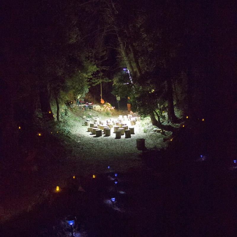 Concert de Quico Tretze al bosc de Clariana - Clariana