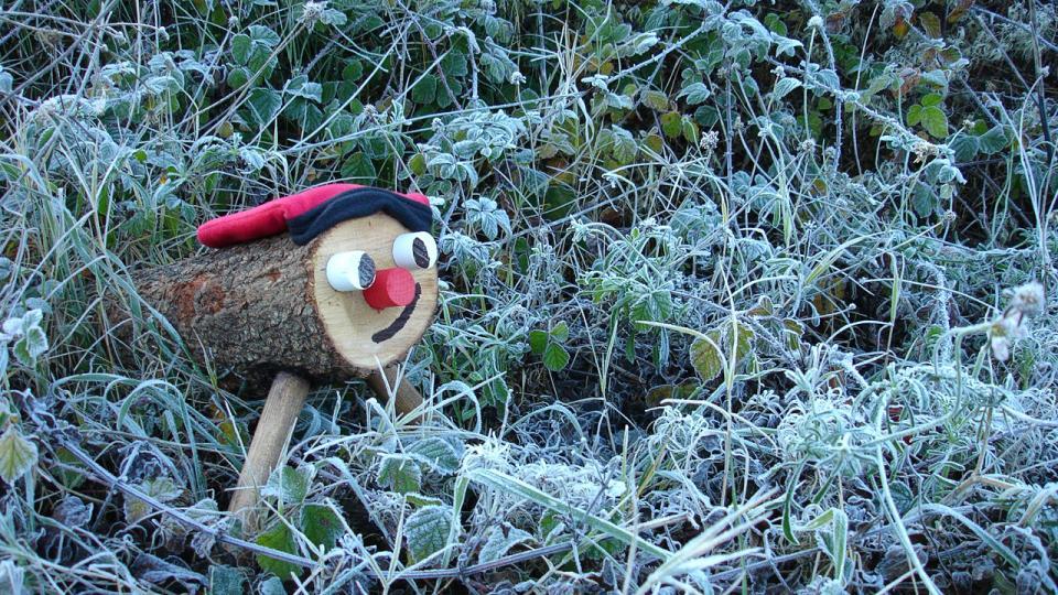 El fred no els espanta