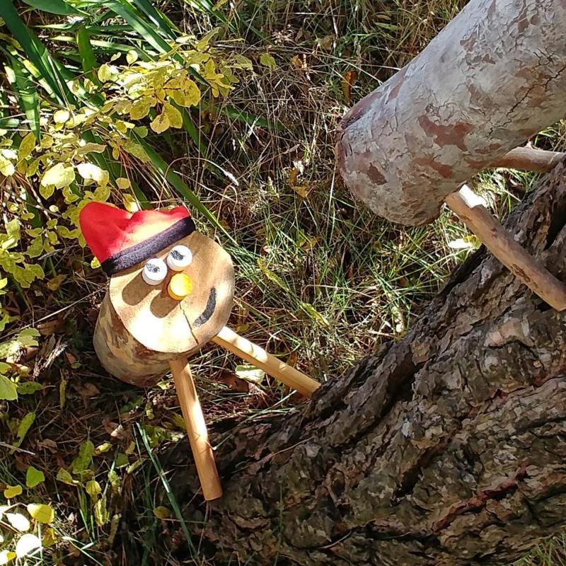 Els tions ensenyen als seus petits a pujar els arbres