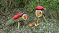 Els tions al bosc